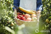 [비지니스 인사이트] 농업의 현재와 미래, 일자리가 한눈에!
